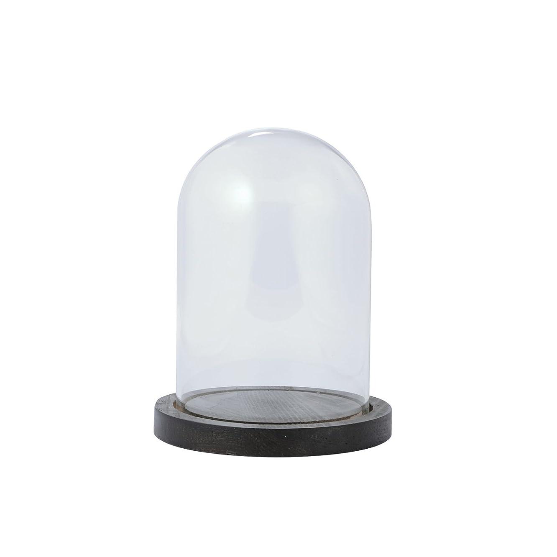 雇用ラバ実際の東京堂 花器 ガラスドーム&ウッドM   GG510209