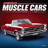 Car Cover For American Motors