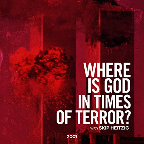 Where Is God in Times of Terror? audiobook cover art