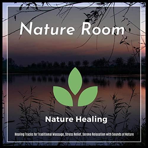 Ambient 11, Serenity Calls, Yogsutra Relaxation Co, Healed Terra, Sanct Devotional Club, Liquid Ambiance, Sapta Chakras & Mystical Guide