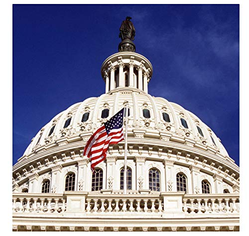 Capitolio de los Estados Unidos, Washington, DC Rompecabezas de madera de 1000 piezas, rompecabezas de ocio y entretenimiento para niños adultos, juguete A239