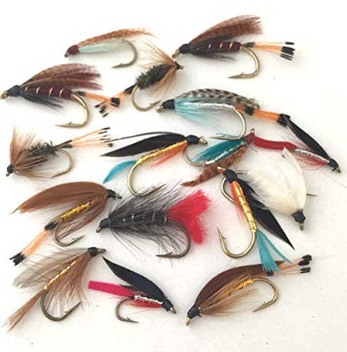 Angeln Fliegen groß Wet Fly Selection Seatrout 16 Fliegen Pack # 20