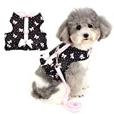 Zunea No Pull Small Dog Girl Harness Dress Escape Proof Cat Kitten Vest Harness Leash Set Step-in Soft Cotton Padded Polka Dot Jacket Chihuahua Puppy Clothes with Cute Bow for Walking Black M