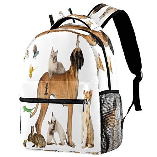 Mochila de viaje con diseño de perros para la escuela, mochila para libros, mochila informal, estampado 3 (Multicolor) - bbackpacks004