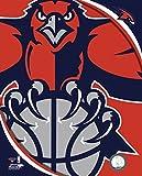 The Poster Corp Atlanta Hawks Team Logo Photo Print (27,94
