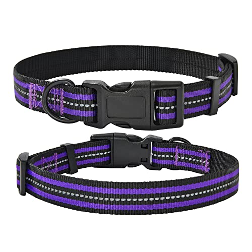Mile High Life Night Reflective Double Bands Nylon Dog Collar