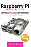 Raspberry PI Beginners Guide: The Ultimate Raspberry PI 4 Setup, Programming, Projects Guide