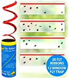 Best Fly Papers - Raid Fly Ribbon & Window Fly Trap Bundle Review