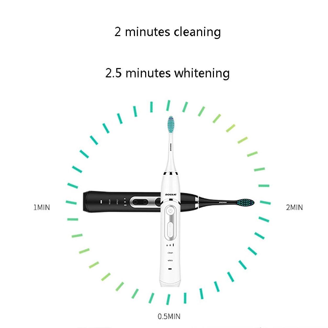地震自分を引き上げる枠ソニック電動歯ブラシ、電動歯ブラシ、2つの交換用ブラシ付き充電式電動電動歯ブラシヘッド、トラベルケース