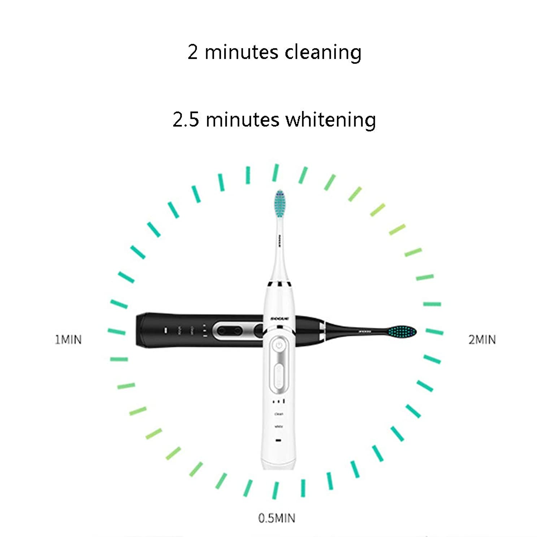 実業家代名詞羽ソニック電動歯ブラシ、電動歯ブラシ、2つの交換用ブラシ付き充電式電動電動歯ブラシヘッド、トラベルケース