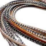 Extensiones de pelo de plumas auténticas XXL, de 28 a 33 cm de largo, 10 anillas y bucle ...