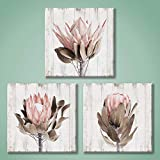 UTOP-art Pink Floral Picture Wall Art: Protea...