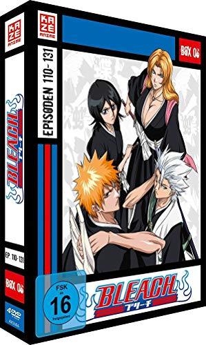 Bleach TV Serie - Box 6 - [DVD]