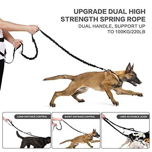 Pecute Correa Running Perro Correa Manos Libres para Perros Grande Proteger la Cintura con Costuras Reflectantes, Cinturones de Cintura Ajustables, Endure 110kg