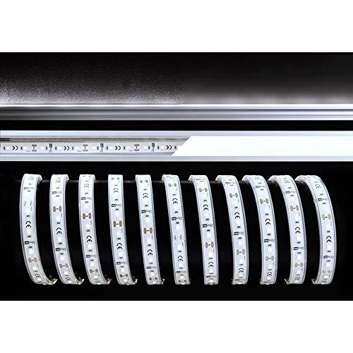 KapegoLED Flexibler LED Stripe, 2835-60-12V-4000K-5m-Silikon EEK: A