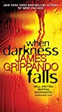 book cover art for When Darkness Falls by James Grippando
