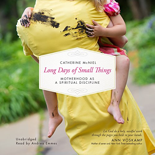 Long Days of Small Things audiobook cover art