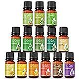 Aceites Esenciales Anjou, 14 Aceites Esenciales de Aromaterapia (Lavanda, Naranja Dulce, Menta, Árbol de Té, Eucalipto, Limoncillo, Bergamota, Incienso, etc.)