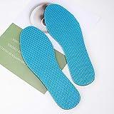 Release Plantilla de desodorización de ajenjo Suave y malla Plantilla cómoda y transpirable Almohadilla para zapatos (Size : 40-250MM)