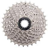 CLOUDH 8 Velocidad de Bicicletas de Rueda Libre, Ultralight 11-32T de Bicicletas de MontañA de Ruedas Dentadas, Bicicleta de Reemplazo de Accesorios, Compatible con Shimano y Sram Gear Shift Kit