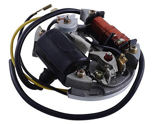 Lichtmaschine Zündung für Puch Maxi 6V 17W Hercules Mofa Prima 2 3 4 5 Sachs 505 Zündspule