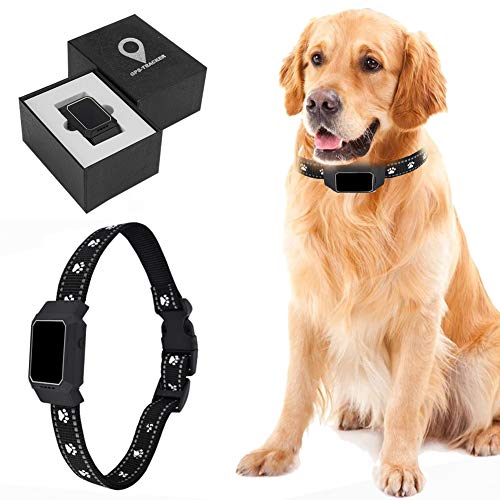 GPS Pet Tracker, Real Time Cat Dog Finder Locator Activity Monitor Mini Pet GPS Tracker, Waterproof Dog Collar Tracking Device with Remote Voice Monitor, APP Control, No Monthly Fee