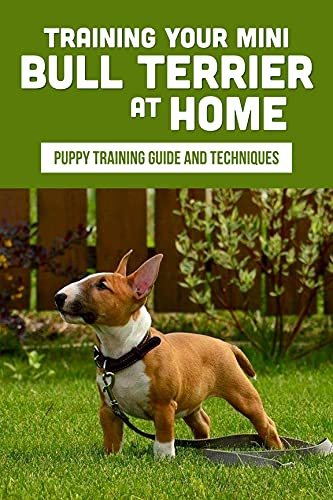 Training Your Mini Bull Terrier At Home: Puppy Training Guide And Techniques: Secrets To Train Your Mini Bull Terrier (English Edition)