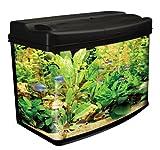 Interpret - Aquarium pour poissons
