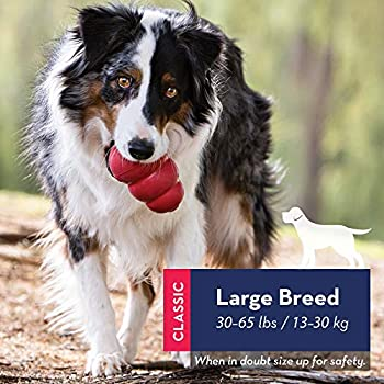 KONG - Classic Dog Toy - Caoutchouc Naturel Résistant - Jouet à Mordre, Chasser et Rapporter - pour Chien Grande Taille