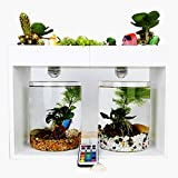 XLSQW Desktop Fish Tank Miniature Landscape Fish Tank Aquaponic Ecosystem Planter Water Garden Decor Wooden Frames with Light, for Room, Office Home,B