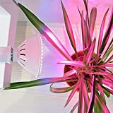 ELECTROPRIME A246 E27 7W Saving Bright LED Indoor Flower Plant Grow Light Green