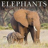 Elephants 2021 Wall Calendar