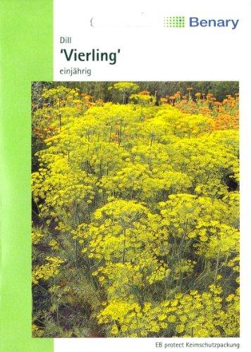 Dill, Vierling, ca. 400 Samen