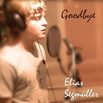 Goodbye (feat. Timo Boehme)