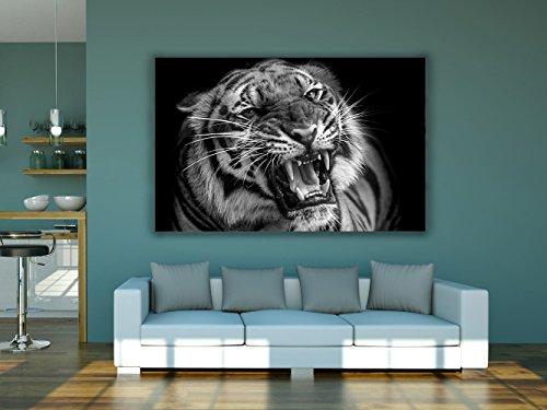 Cuadro PVC Impresión Digital Tigre Multicolor 100 x 60 cm | Disponibl