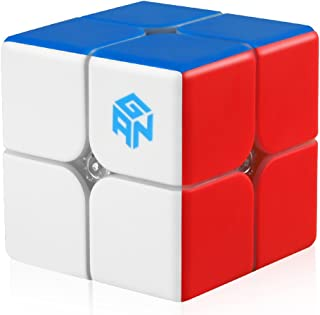 D-FantiX Gan 249 V2 2x2 Speed Cube Stickerless Gan 2x2 Magic Cube Puzzle Toy (49mm)