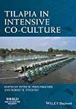 Tilapia in Intensive Co-Culture