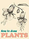 How To Draw Plants: How To Draw Botanical Illustrations (How To Draw Books For Adults and Kids Book 1)