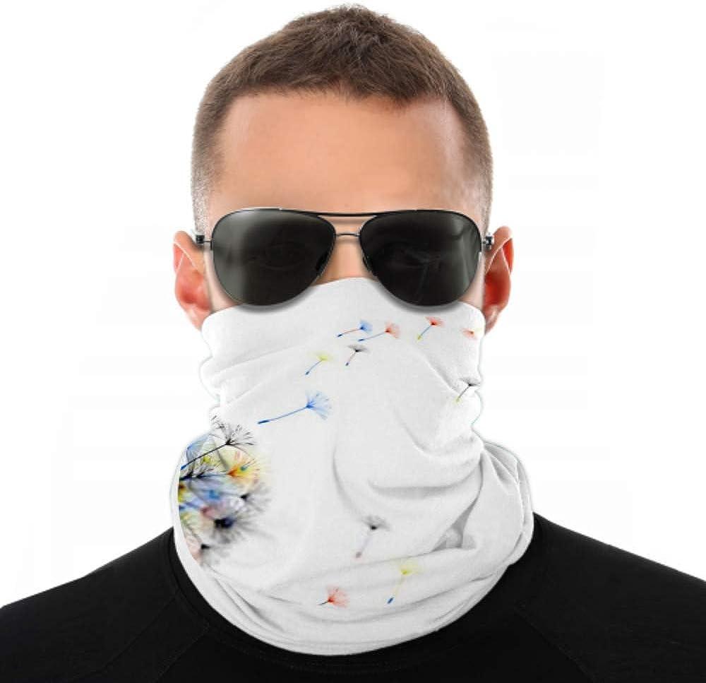 Headbands For Men Women Neck Gaiter, Face Mask, Headband, Scarf Abstract Background Dandelion Design Wind Blows Turban Multi Scarf Double Sided Print Bandana Headband For Women For Sport Outdoor
