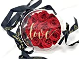 Bolso de 8 Rosas eternas Rojas - Flores Día de la Madre - Flores preservadas en Caja acrílica Redonda Transparente