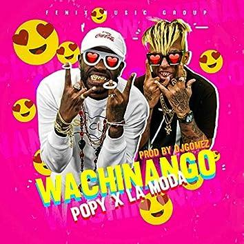 Wachinango