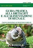 Guida pratica alla DietaGift e all'alimentazione di segnale: Non esistono scoiattoli obesi