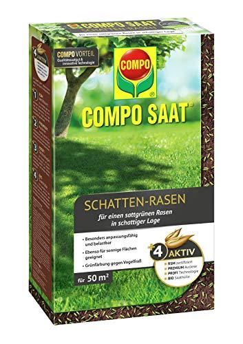 Compo SAAT Schatten-Rasen, Spezielle Rasensaat-Mischung mit wirkaktivem Keimbeschleuniger, 1 kg, 50 m²