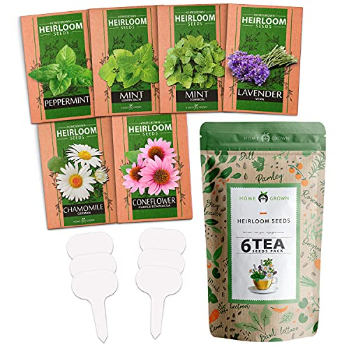 Medicinal Herb Seeds Collection | 6 Heirloom Tea Seeds | Non GMO Lavender, Chamomile, Mint Seeds for Planting Outdoors & Indoors - Lemon Balm, Peppermint, Echinacea | Gardening Gifts for Women & Men