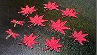 プロ野球応援グッズ(広島用)縁取り刺繍紅葉蜻蛉ワッペンセット濃赤 コレクション