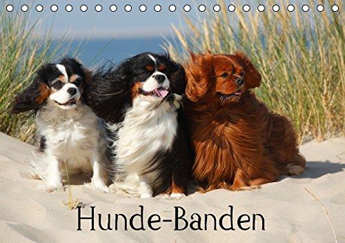 Hunde-Banden (Tischkalender 2015 DIN A5 quer): 12 Gruppen verschiedener Rassehunde begleiten Sie durchs Jahr. (Monatskalender, 14 Seiten)