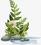 HXCHR Fleur Plante Tropicale Jardinage Herbe Motif/Peinture à l'huile par numéros/kit de Peinture numérique Bricolage, Toile Toile Murale art-50x65 cm