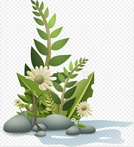 HXCHR Patrón de Hierba de jardinería Tropical de Plantas de Flores/Pintura al óleo por números/Kit de Pintura Digital DIY, Lienzo Lienzo Mural art-50x65cm
