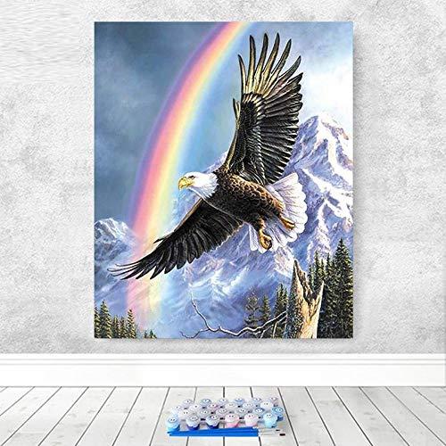 LMTAMN Pintar por números Arte Del Arco IrisÁguila Orgullosa En El Cielo Pintura Al Óleo Pintura De Bricolaje Por Número Pintura Digital Arte De La Pared Pintura Decorativa Del Hotel Familiar