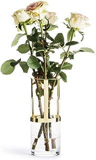 Sagaform Designer Adjustable Glass Vase, Clear/Gold